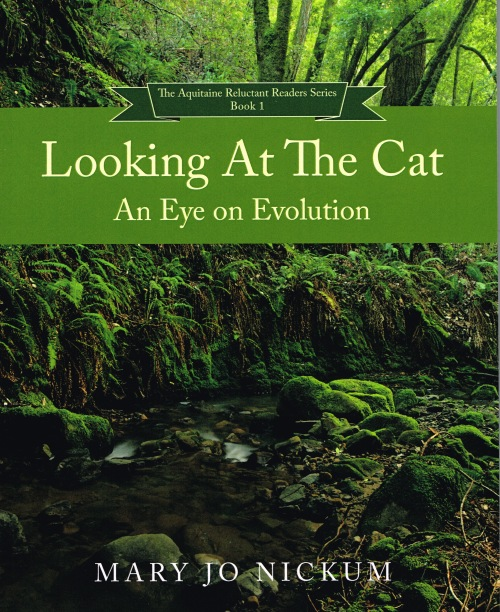 looking-at-the-cat